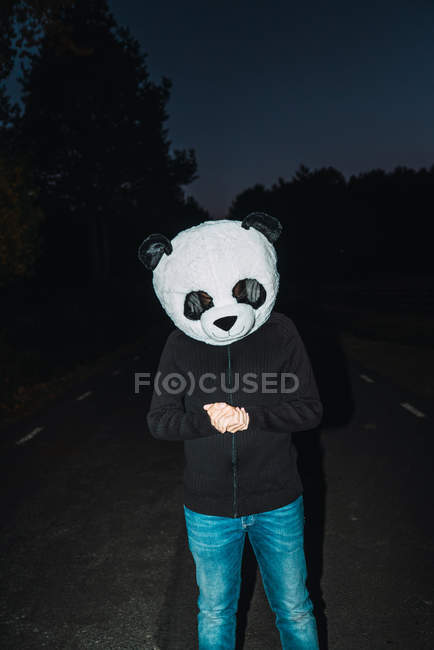 Portrait of man wearing panda head mask posing at night road — Stock Photo