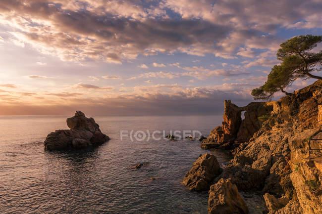 Краєвид скелі на скелястому узбережжі — стокове фото