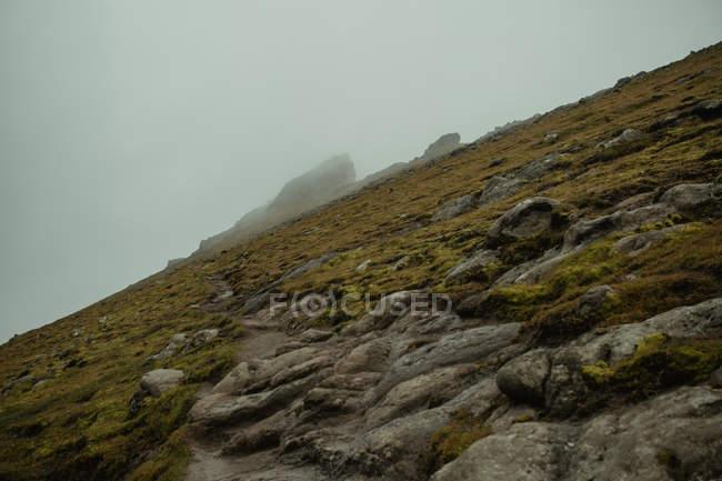 Vue du dessous de la piste verte rocheux de la colline — Photo de stock