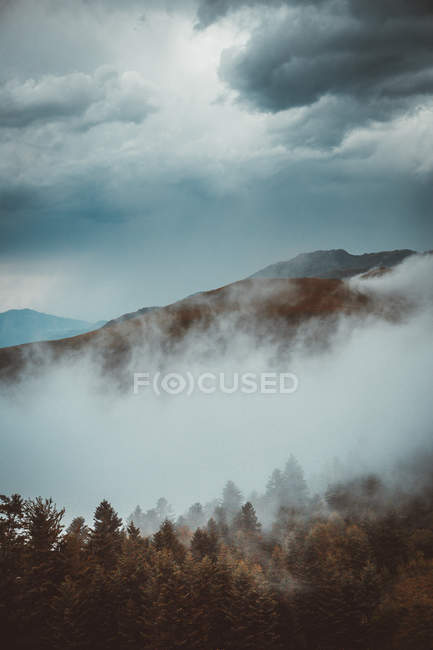 Landscape of fog spreading above slope of mountains — Stock Photo