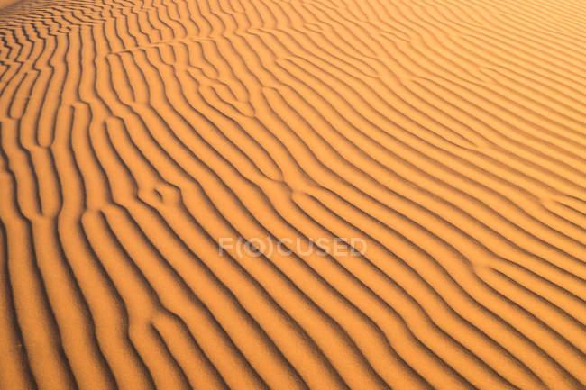 Vue rapprochée du motif ondulé sur les dunes de sable — Photo de stock