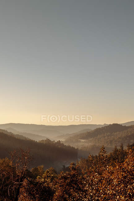 Tranquil landscape of foggy valley at cloudless day — Stock Photo