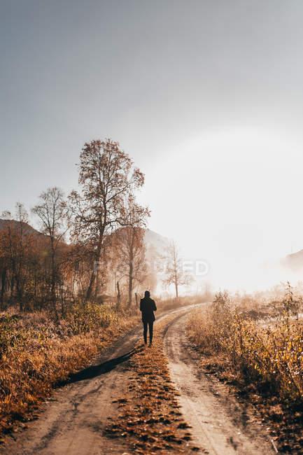 Hintere Ansicht Tourist auf Landstraße in Landschaft Wald wandern — Stockfoto