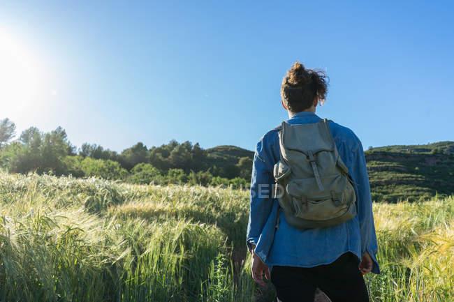 Visão traseira do homem com mochila em campo — Fotografia de Stock