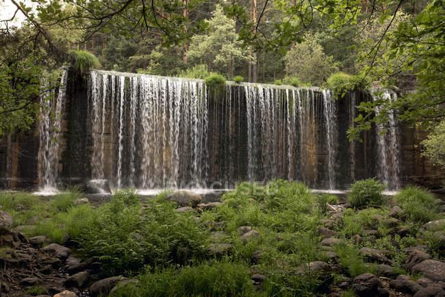 Mostra a cascata in streaming nella profonda foresta pluviale — Foto stock