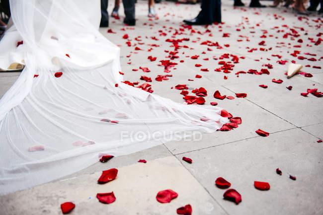 Pétalas de rosa vermelhas deitadas no chão de azulejos na cerimônia de casamento . — Fotografia de Stock