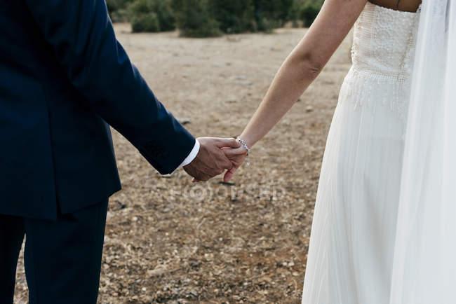Cultivo novia y el novio sosteniendo handsand caminando en campo - foto de stock