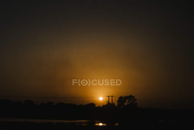 Circle of sun in dark and black silhouettes of trees — Stock Photo