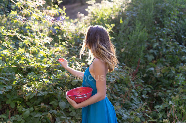 Side view of anonymous girl holding bowl and collecting berries in summer garden. — Stock Photo
