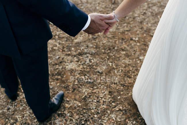 Recortar elegantes noviay novio que se sostiene de la mano y caminar en el campo - foto de stock