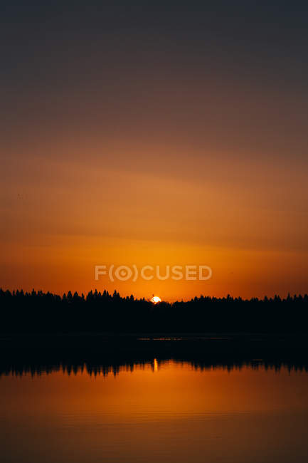 Bright sun going down and lighting calm water of lake in gold. — Stock Photo