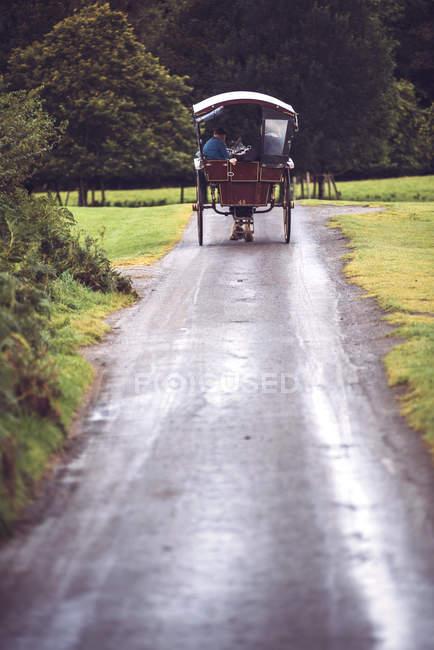 Vue arrière du chariot à cheval sur des routes rurales dans le Parc National de Killarney, Irlande — Photo de stock