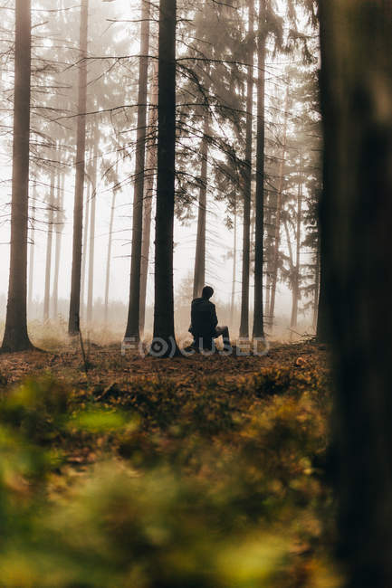 Rear view of traveler sitting in dark foggy woods — Stock Photo