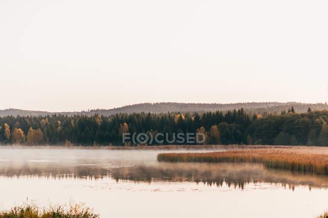 Paysage matinal pittoresque de brouillard dérivant sur le lac — Photo de stock