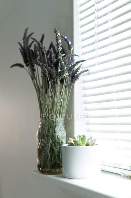 Beautiful flowers placed in jar on window sill at home. — Stock Photo