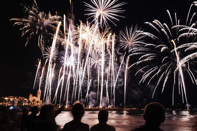 Фейерверки в ночном небе над рекой — стоковое фото