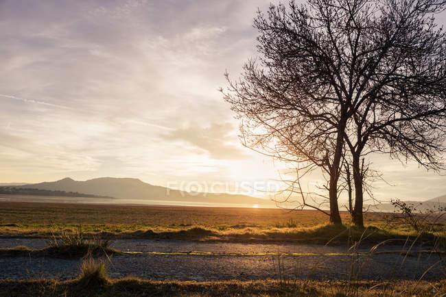 Paysage idyllique de campagne au coucher du soleil — Photo de stock