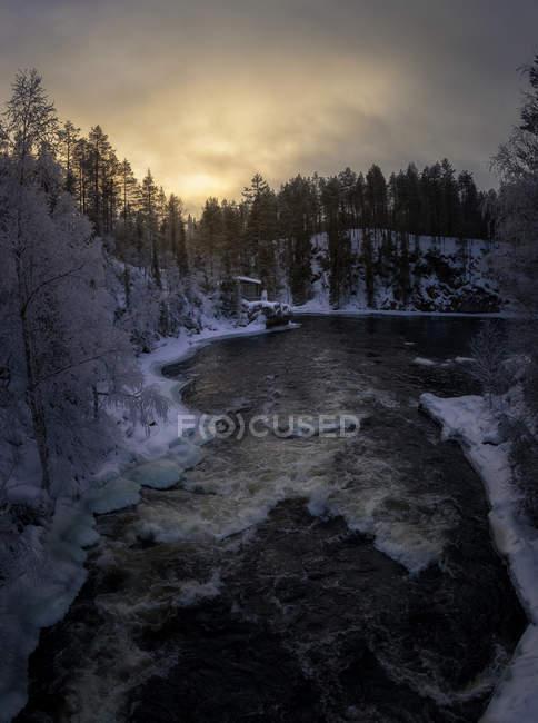 Vista de ángulo bajo al río de invierno que fluye en el bosque de invierno por la noche . - foto de stock