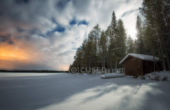 House at winter forest scene over cloudy sky — Stock Photo