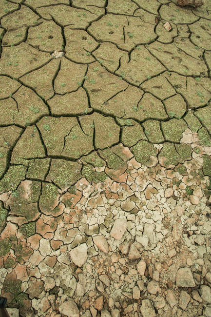 Full frame shot of cracked ground of dry riverbed — Stock Photo
