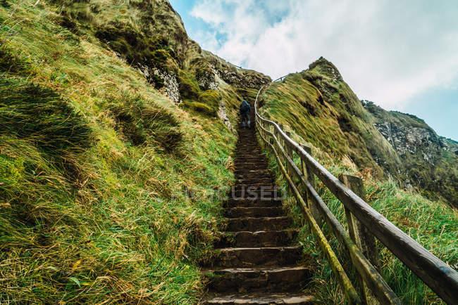 Заднього виду туристичного нагорі ходьба на зеленому пагорбі — стокове фото