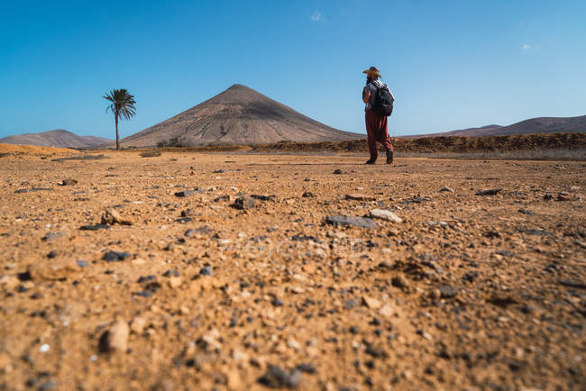 Rear view of man with backpack walking in tropical desert — Stock Photo
