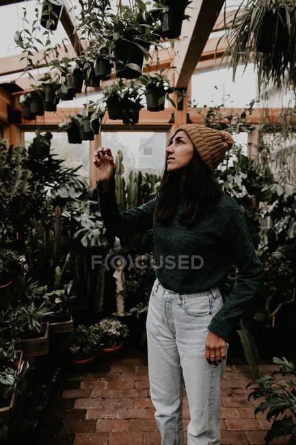 Vista lateral de la joven, mirando a las plantas en invernadero - foto de stock