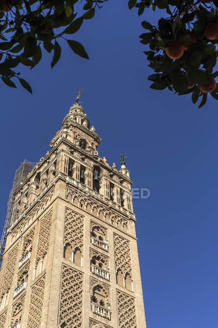 Vista in basso della torre contro il cielo blu — Foto stock