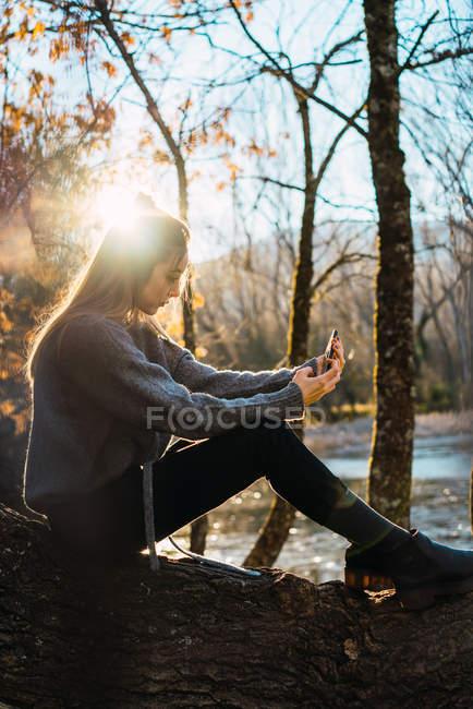 Вид збоку блондинка дівчина сидить на стовбур дерева і беручи selfie в осінній сонячного світла — стокове фото