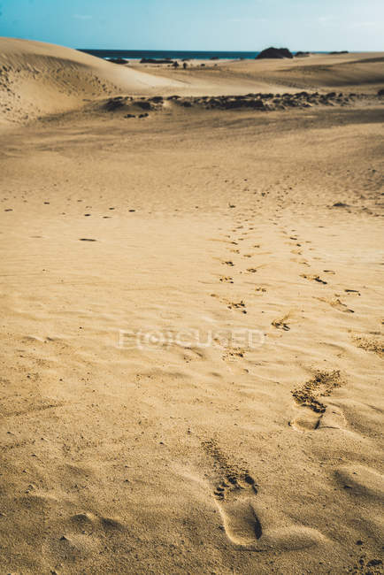 Close up view of sandy surface with feet prints — Stock Photo