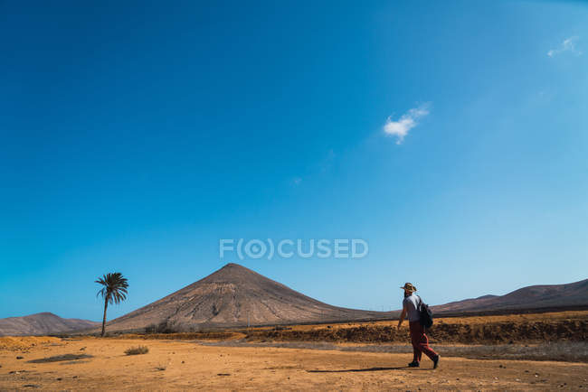 Side view of man with backpack walking in tropical desert — Stock Photo