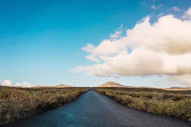 Landschaftsansicht der Straße im Feld an sonnigen Tag — Stockfoto