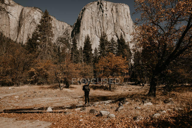 Rear view of tourist with backpack standing at forest meadow — Stock Photo