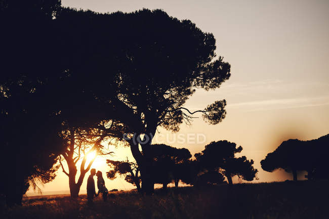 Romantic couple embracing in middle of field at sunset under tree — Stock Photo