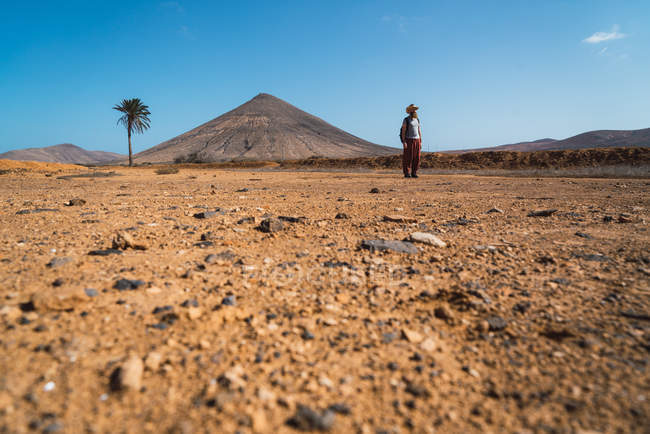 Distant view of man with backpack walking in tropical desert — Stock Photo