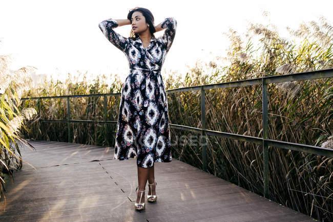 Жінка в гарне плаття позують з підняті руки за волосся і дивлячись геть на Парковий міст — стокове фото