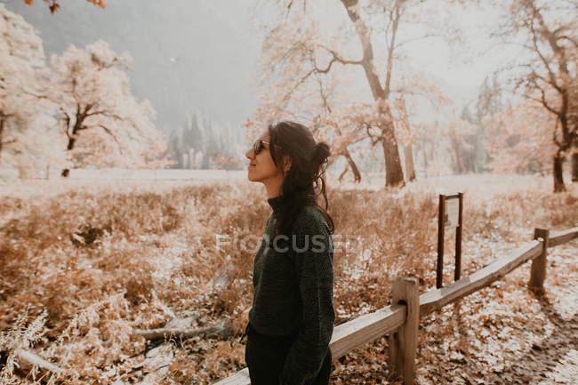 Vista lateral da mulher bonita turista em óculos de sol posando na floresta em dia ensolarado . — Fotografia de Stock