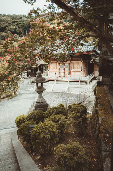 View through tree branch to traditional Asian village building — Stock Photo