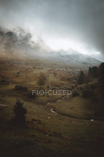 Landscape of grassy mountain valley in cloudy day. — Stock Photo