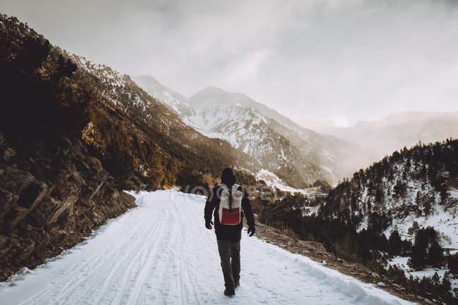 Vista posteriore del turista con lo zaino che cammina sulla strada della montagna — Foto stock
