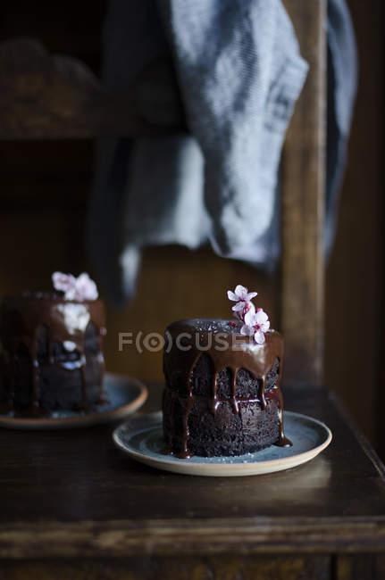 Close-up vista de bolos de chocolate caseiros — Fotografia de Stock