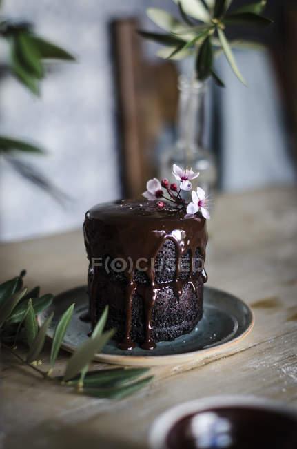 Close-up vista do bolo de chocolate caseiro — Fotografia de Stock