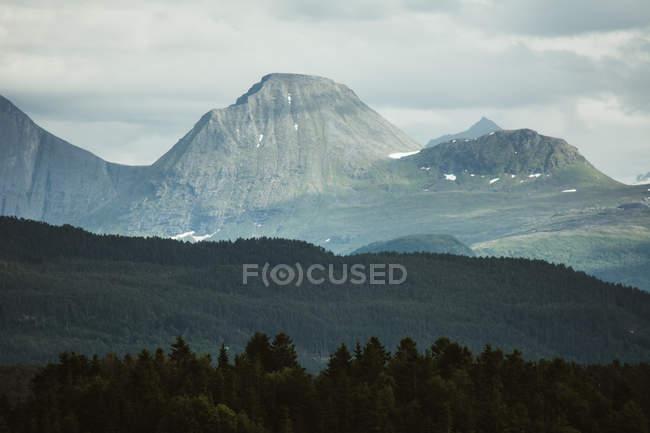 Maravillosa vista de Cordillera de montañas con terreno bosque conífero en frente - foto de stock