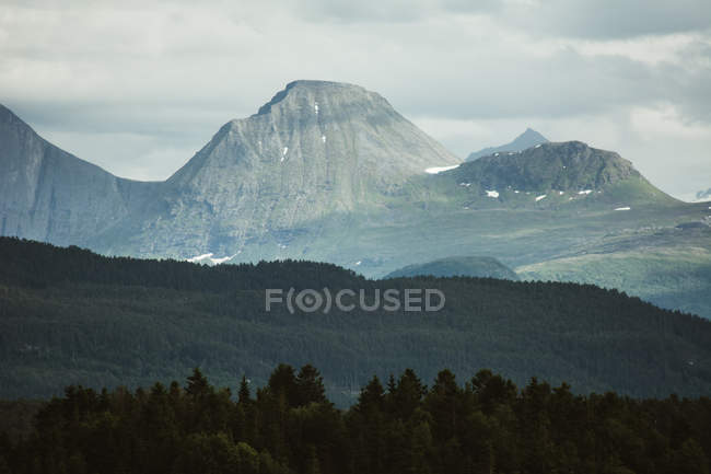 Wonderful view of mountains ridge with coniferous woods terrain in front. — Stock Photo