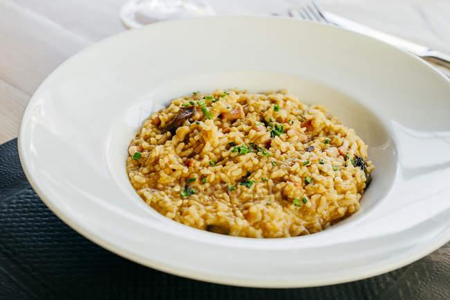 Chiuda sulla vista di riso con carne sulla piastra — Foto stock