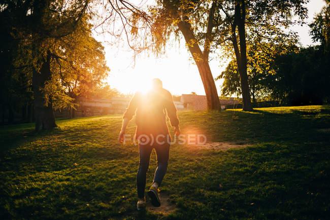 Vue arrière du rétro-éclairé homme marchant dans le parc ensoleillé — Photo de stock