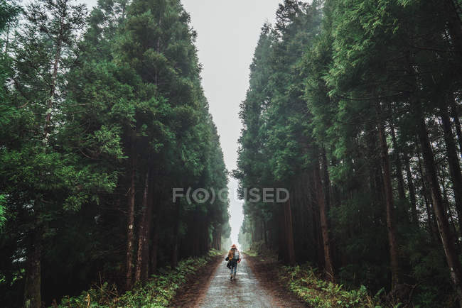 Young woman standing on road amid tall woods on foggy day — Stock Photo