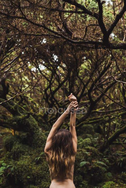 Vista posteriore del modello nudo in posa con le braccia alzate in alberi verdi — Foto stock
