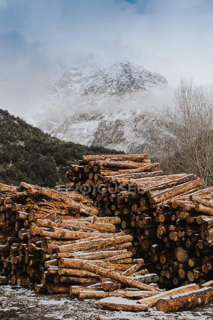 Bois de chauffage empilés sur fond de montagnes enneigées . — Photo de stock