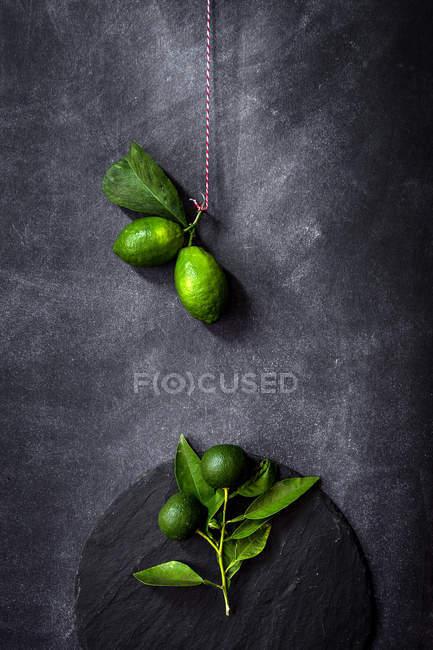Stillleben mit frischen Zitronen auf dunklen Tisch — Stockfoto